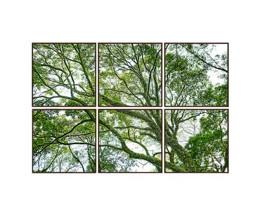 Jogo de Quadros com Vidro Paisagem Árvore - 186x124cm, Multicolorido   WestwingNow