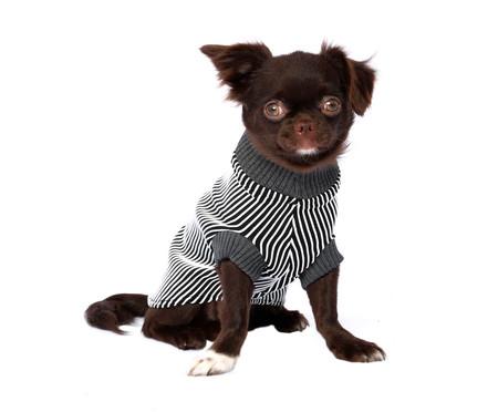 Suéter para Cachorro Minimal - Preto e Branco   WestwingNow