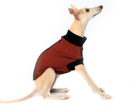 Suéter para Cachorro Minimal - Terra | WestwingNow
