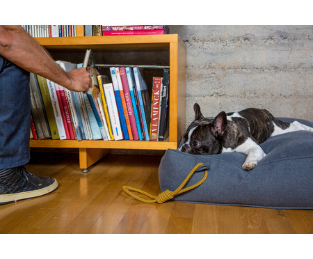 Caminha para Pet Eco Pufe - Jeans   WestwingNow