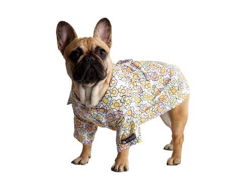 Camiseta Tal Pai Tal Pet Liberty - Colorida | WestwingNow