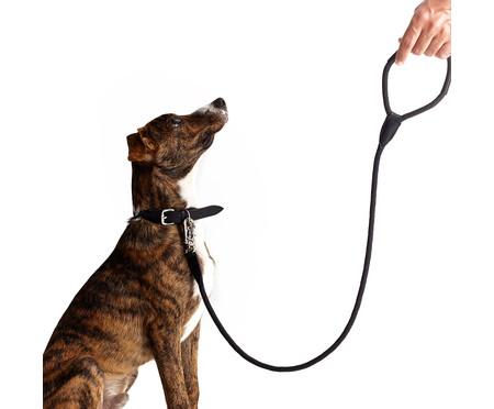 Guia para Cachorro Rope - Prata e Preta | WestwingNow