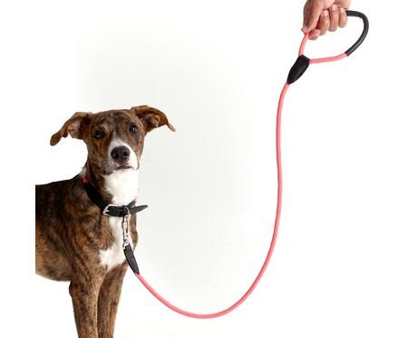 Guia para Cachorro Rope - Prata e Rosa | WestwingNow