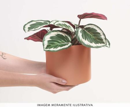 Cachepot para Plantas Rossi - Terracota   WestwingNow