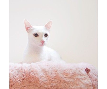 Cama Pelúcia para Pet - Rosa | WestwingNow