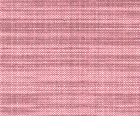 Sofá Clementine - Rosa Flamingo | WestwingNow
