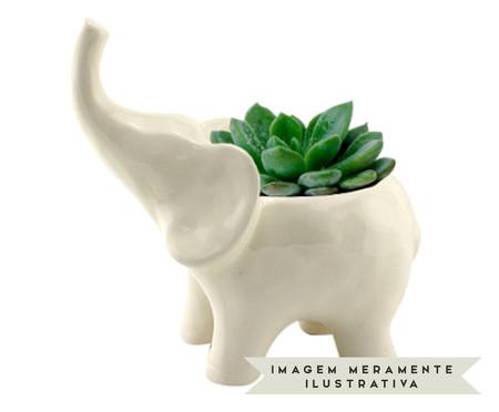 Cachepot Elephant - Branco | WestwingNow