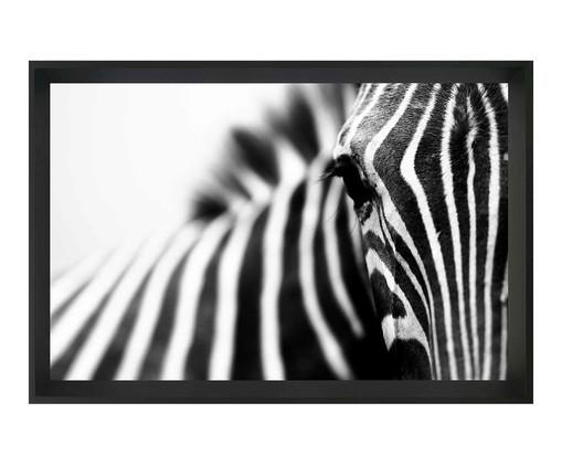 Quadro com Vidro Zebra, Preto | WestwingNow