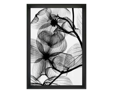 Quadro flor raio-x  Concepcion | WestwingNow