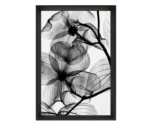 Quadro flor raio-x  Concepcion, Preto | WestwingNow