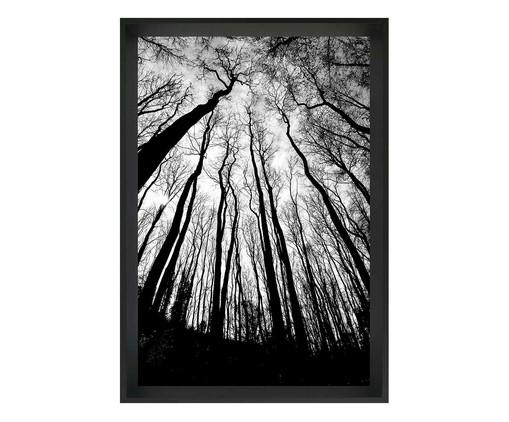 Quadro com Vidro Floresta, Preto | WestwingNow
