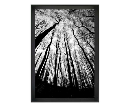 Quadro com Vidro Floresta | WestwingNow
