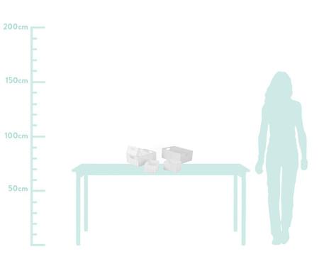 Jogo de Cestos Organizadores Milene em Fibra Sintética - Branco | WestwingNow